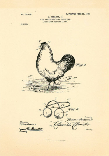 Patent-chicken_3302415k