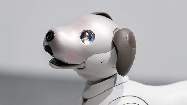 Sony's Aibo AI Dog